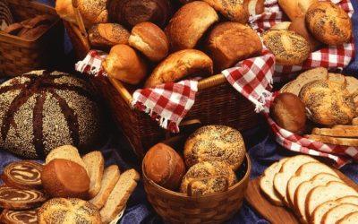 Diät ohne Kohlenhydrate – Wieso dies nicht sinnvoll ist