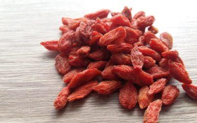 Goji Beeren – Die großen Vorteile vom Superfood